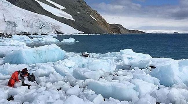 Türkiye'den Antarktika'ya geçici bilim üssü