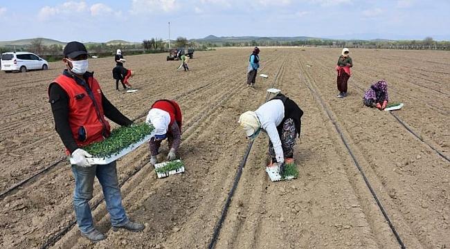 Bursa'dan tarıma destek çağrısı